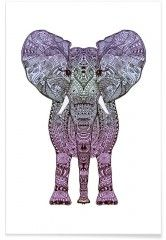 Purple Elephant - Premium Poster