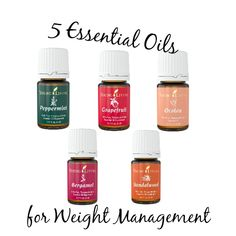 Essential oils have thousands of benefits; weight loss and craving control being just a few. I'm sharing 5 essential oils for weight management.