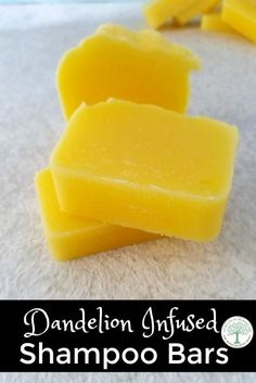 When dandelions are popping up, use some of them to make this luxurious shampoo bar! The Homesteading Hippy via @homesteadhippy