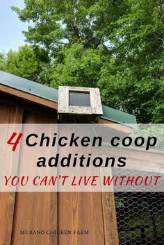 4 absolutely must have chicken coop additions! When building your coop you want to make sure you install everything you need. Don't skip these 4 things that make your life so much easier! #chickens #homesteading #chickencoop