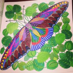 Think This One Has Taken Me Over A Week To Finish But I Am Really Curious CreaturesColour TherapyAdult ColoringColoring BooksColoring