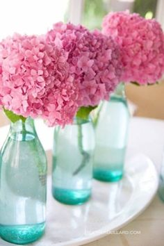 pink hydrangeas in light blue, almost turquoise bottles