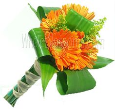 Danielle..this is the Gerbera Bouquet idea I like for the BM's but obviously different colored gerberas..I love the fillers tho