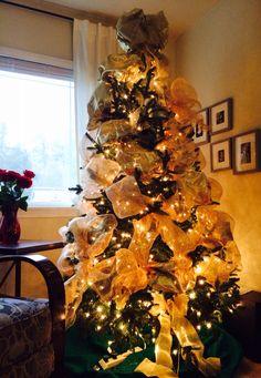 Christmas Tree 2014 - lights up!