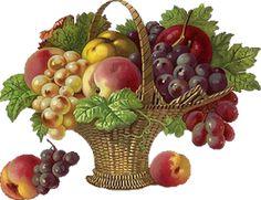 http://3.bp.blogspot.com/_kiaqFKqxpDw/SslRqHRrqnI/AAAAAAAADWc/lvtBH5VyGJ8/s400/rj_fruit2.png