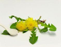 Unusual healing benefits of Dandelions