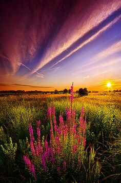 Beautiful Sky and Scenery Beautiful Sky, Beautiful World, Beautiful Landscapes, Beautiful Places, All Nature, Amazing Nature, Nature Pics, Eckhart Tolle Meditation, Landscape Photography