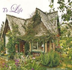 Tiny cottage in the garden storybook house
