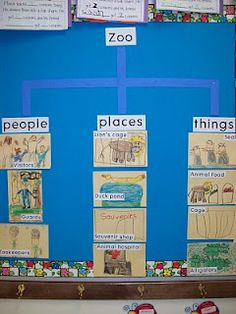 Zoo unit ideas