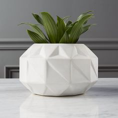 Shop bennie low vase-planter.  Bright white stoneware vase/planter angles a faceted geo pattern in 3D relief.  Architectural design lays low profile, with a wide opening.