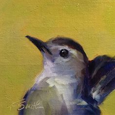 kim smith fine art: gray catbird