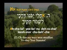 TRAILER: LEARN TEHILIM / PSALM 119 IN HEBREW & ENGLISH, PART 1 ALEF-HEY: PSALM 119:1-40 INSTANT DOWNLOAD VIDEO AVAILABLE AT SHUV STORE What you won't see in ...