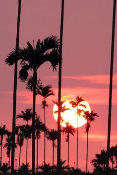 Aloha Friday!! Finally :)