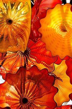 Il colore e' poesia dell'anima. Dale Chihuly