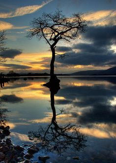 Reflection in the Loch, Scotland Baum See Sonnenuntergang Himmel Wolken Amazing Photography, Landscape Photography, Nature Photography, All Nature, Amazing Nature, Beautiful World, Beautiful Places, Foto Art, Pretty Pictures