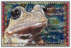 Nature in art: Cosmic Frog drawing