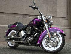 Harley Softail, Moto Violet, Purple Motorcycle, Harley Davidson, Biker Chick, Motorbikes, Choppers, Motorcycles, Sexy