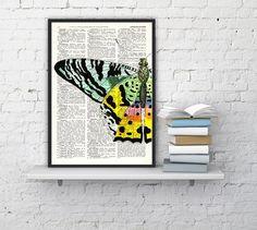Butterfly detail Book print art  Hand painted Butterfly  door PRRINT