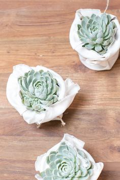 #DIY Succulent Favors - wrapped in linen, tied with twine! #celebrateeveryday
