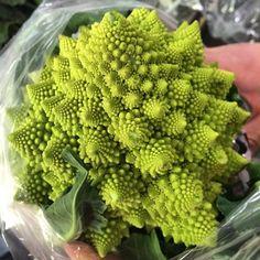 Crazy Cauliflower!  - Rhythm of Our Lives @ Rhythmofourlives.com