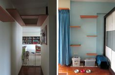 Singapore Flat with Cat Shelves Floating Cat Shelves, Cat Climbing Shelves, Box House Design, Cat Walkway, Cat Tree Designs, Cat Wall Furniture, Cat Stairs, Warrior Cats Books, Living With Cats
