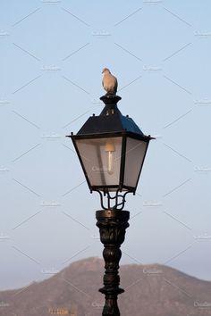 Silence Photos Old lantern on Tenerife. Canary islands. Spain by TalyaPhoto