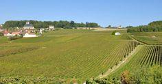 Champagne (França): No nordeste da França, monges beneditinos desenvolveram um processo de segunda fermentação do vinho branco, já dentro da garrafa, dando origem a um espumante que leva ao mundo o nome da região: Champagne. Por seu excepcional valor universal, foram protegidos os locais onde a produção foi criada, no início do século 17, até sua industrialização no século 19. Três lugares foram incluídos: as vinhas históricas de Hautvilliers, Ay e Mareuil-sur-Ay