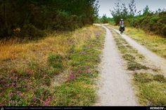 Traseu cu bicicleta MTB XC El Camino de Santiago del Norte - 11: Baamonde - Miraz - Roxica - Sobrado Dos Monxes . MTB Ride El Camino de Santiago del Norte - 11: Baamonde - Miraz - Roxica - Sobrado Dos Monxes - Galicia, Spania Country Roads, Mtb Bike, Camino De Santiago, Norte