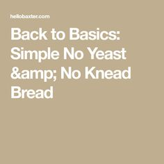 Back to Basics: Simple No Yeast & No Knead Bread