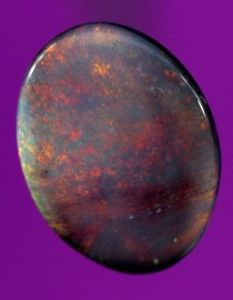 1.6ct Black Opal. Visit our website to see Over 600 solid opals on display. Buy Australian Black opals, Milk Opals, Crystal Opal, Boulder Opals. Buy any quantity. Bulk purchases welcome.