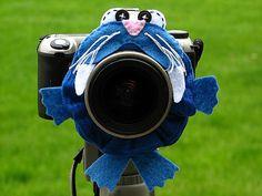 Walrus Lens Pet