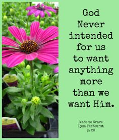 healthy living quotes motivational messages without women Crave Quotes, Get Healthy, Healthy Life, Made To Crave, The Best Yes, Lysa Terkeurst, Online Bible Study, Healthy Living Quotes, Memories Quotes