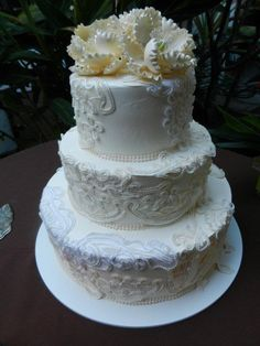 This was the finished product of our wedding cake...Lace applique on our delicious cake from Portos Bakery.
