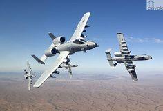 "Fairchild-Republic A-10C Thunderbolt II ""Warthogs"""