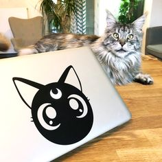 Sticker macbook optimistick chat Sailor Moon