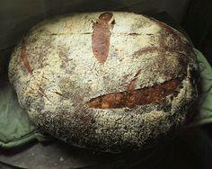 Studio and Garden: Making Bread: A Sourdough Pain de Campagne. Getting technical!