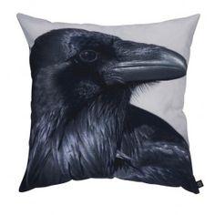 Raven, 60x60 cm