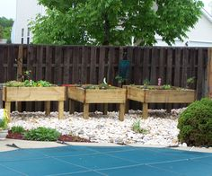 I built these raised garden beds for two reasons, the first was to avoid the back pain that my father feels when bent over a traditional raised bed f...