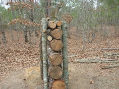Picture of Wood Log Shooting Backstop
