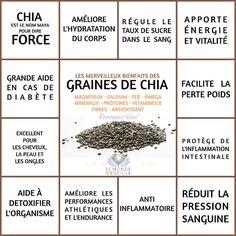 GRAINE DE CHIA   Le Monde s'éveille