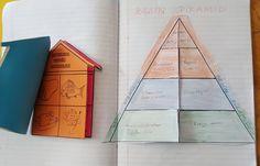 4.sınıf Besin Piramidi..Cannur HAZNEDAR Books, Libros, Book, Book Illustrations, Libri
