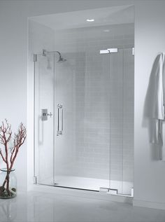 Bathroom  Crisp White Wall Paint And Bathrobe Hook Feat Dry Plant Display Also Snazzy Frameless Shower Door Frameless Shower Doors Complete the Captivating Master Bathroom Interior Design