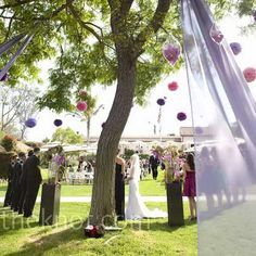 This is interesting...have fabric pulled back from trees    Real Weddings - Enchanted Garden - Wedding Ceremony Tree Decor