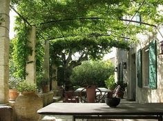 Canopy with vines/trees - would love to get this kind of feeling in side yards without attaching anything to the house