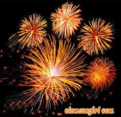 Clemson Girl - Happy 4th of July! Tiger Paw orange fireworks!