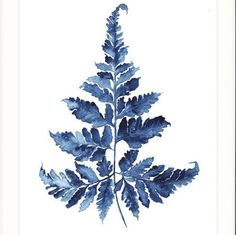 As featured in Lisa & John's Entrance Hall in the Bendigo House in Reno Rumble 2016. Watercolour fern print, printed as a giclee on fine quality art paper.