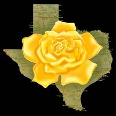 """There's a yellow rose in Texas, that I am going to see. Her eyes are bright as diamonds, they sparkle like the sea"".... I used to sing this in elementary school during music class and I still find myself humming the tune to this day."