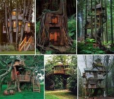 The most incredible Tree house hotel and Eco-tourism tree resorts all around the world and for all budgets. Experience nature and Ecotourism within a tree! Beautiful Tree Houses, Cool Tree Houses, Nice Houses, Amazing Houses, Future House, My House, Outdoor Spaces, Outdoor Living, Outdoor Sheds