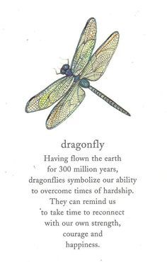 Dragonflies symbolize our ability to overcome times of hardship. They remind us to take time to reconnect with our own strength, courage, and happiness.   I grew up loving dragonflies; when I learned what they symbolize,  I appreciated them so much more.