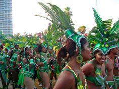 Revelers at the Miami-Broward Festival
